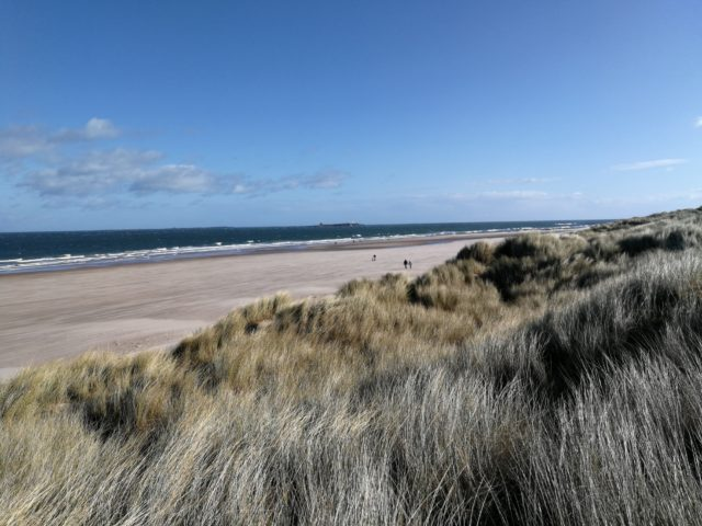 Run202020: Northumberland - The dunes and sand running was sapping, especially in 30mph headwinds